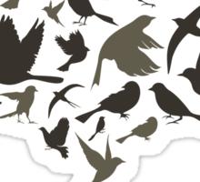 Birds from egg Sticker