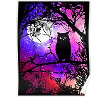 Owl Moon with Night Sky Stars Poster
