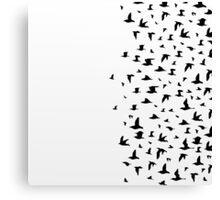 Flight of birds Canvas Print