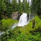 Sahalie Falls by gcampbell