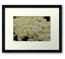Yellow and White Framed Print