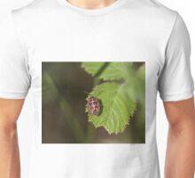 Ornate Shield Bug on Lesvos Unisex T-Shirt