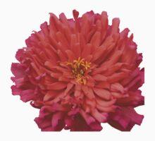 Colorful Garden Flower One Piece - Short Sleeve