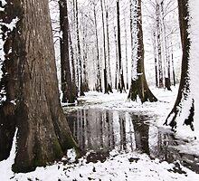Snowy Day by emilymartian