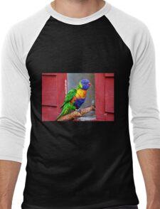 Rainbow Lory Men's Baseball ¾ T-Shirt