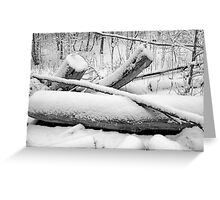 Breaching in a Snow Storm BW Greeting Card