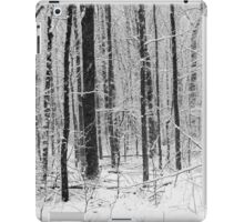 Forest in Snow Storm BW iPad Case/Skin