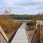 Approaching The Lake by Jack Ryan