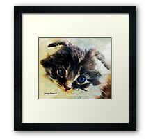 I Didn't Do Nuffin' Framed Print