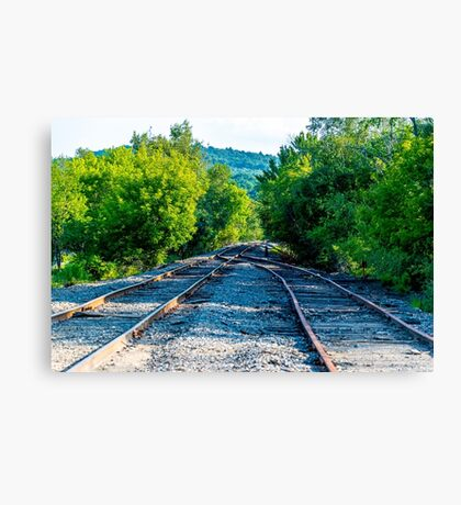 Between the Tracks Canvas Print