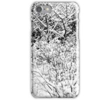 Snow Patterns 4 BW iPhone Case/Skin