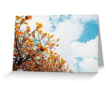 Fig tree on white background Greeting Card