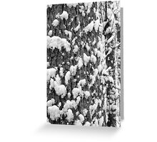 Snow Speckled Tree BW Greeting Card