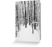 Snowy Forest 14 BW Greeting Card