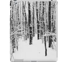 Snowy Forest 14 BW iPad Case/Skin