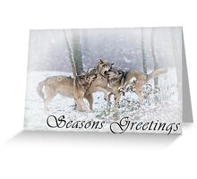 Timber Wolf Seasons Card - 14 Greeting Card