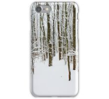 Snowy Forest 14 iPhone Case/Skin