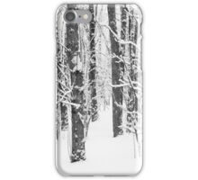 Snowy Forest 15 BW iPhone Case/Skin