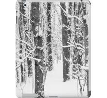 Snowy Forest 15 BW iPad Case/Skin