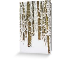 Snowy Forest 15 Greeting Card