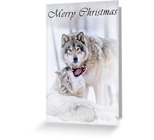Timber Wolf Christmas Card - English - 16 Greeting Card