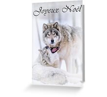 Timber Wolf Christmas Card - French - 16 Greeting Card