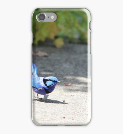 Blue Wren WA iPhone Case/Skin