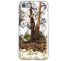 Still, Just Standing after Floods iPhone Case/Skin