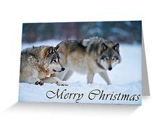 Timber Wolf Christmas Card - English - 17 Greeting Card