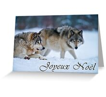 Timber Wolf Christmas Card - French - 17 Greeting Card