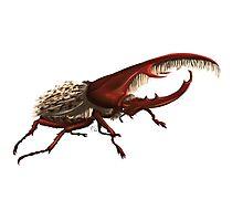 hercules beetle Photographic Print