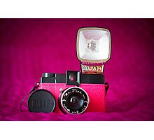 Mr. Pink - Diana F+ Camera Photographic Print