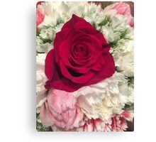 Floral photograph - red rose pink and white background Canvas Print