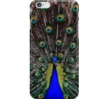Plumage iPhone Case/Skin