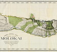 Vintage Map of Molokai Hawaii (1906) by BravuraMedia