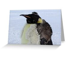Molting Emperor Penguin Greeting Card