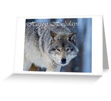 Timber Wolf Holiday Card - 18 Greeting Card