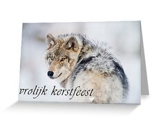 Timber Wolf Christmas Card - Dutch - 19 Greeting Card