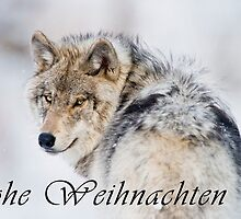 Timber Wolf Christmas Card - German - 19 by WolvesOnly