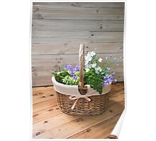 Flower Basket Poster
