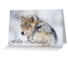 Timber Wolf Christmas Card - Spanish - 19 Greeting Card
