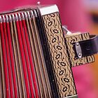 Play me a tune on your accordian please by Clare Colins