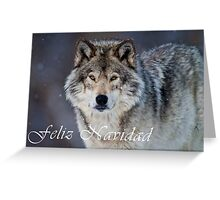 Timber Wolf Christmas Card - Spanish - 20 Greeting Card