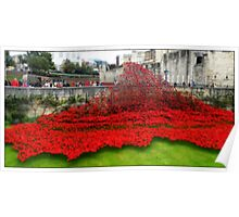 Tower Poppies, London Poster