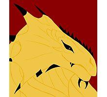Magnus, Dragonborn Pirate Photographic Print