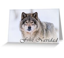 Timber Wolf Christmas Card - Spanish - 21 Greeting Card