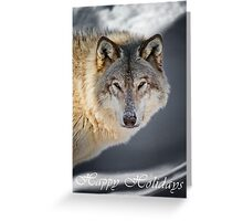 Timber Wolf Holiday Card - 22 Greeting Card