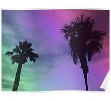 High Palms Poster