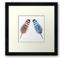 Two Feathers Framed Print