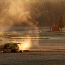 4.9.2014: Treshing I by Petri Volanen